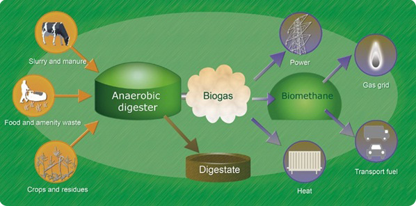 The Process of Anaerobic Digesters