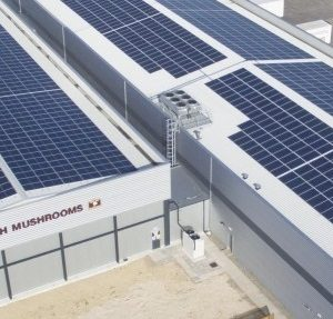 Industrial Unit Solar Panels