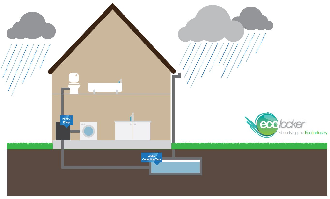 Rainwater Harvesting Illustration