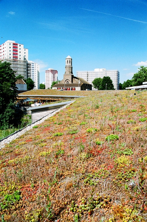Financial benefits green roof