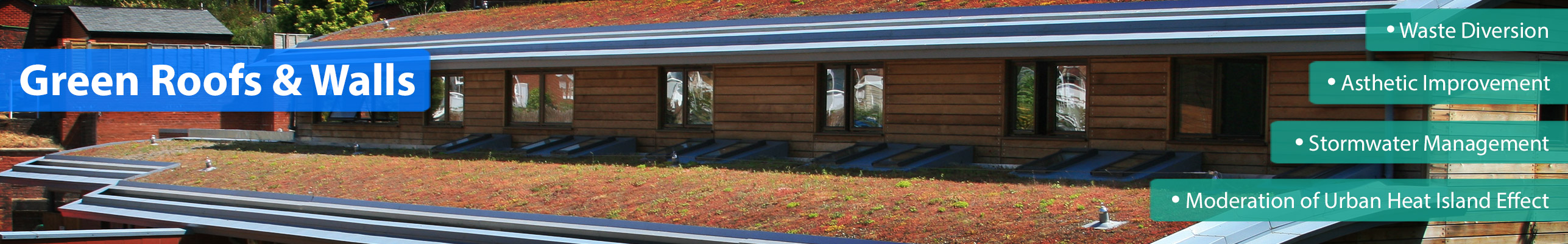 How Do Green Roofs Work Green Roof Information